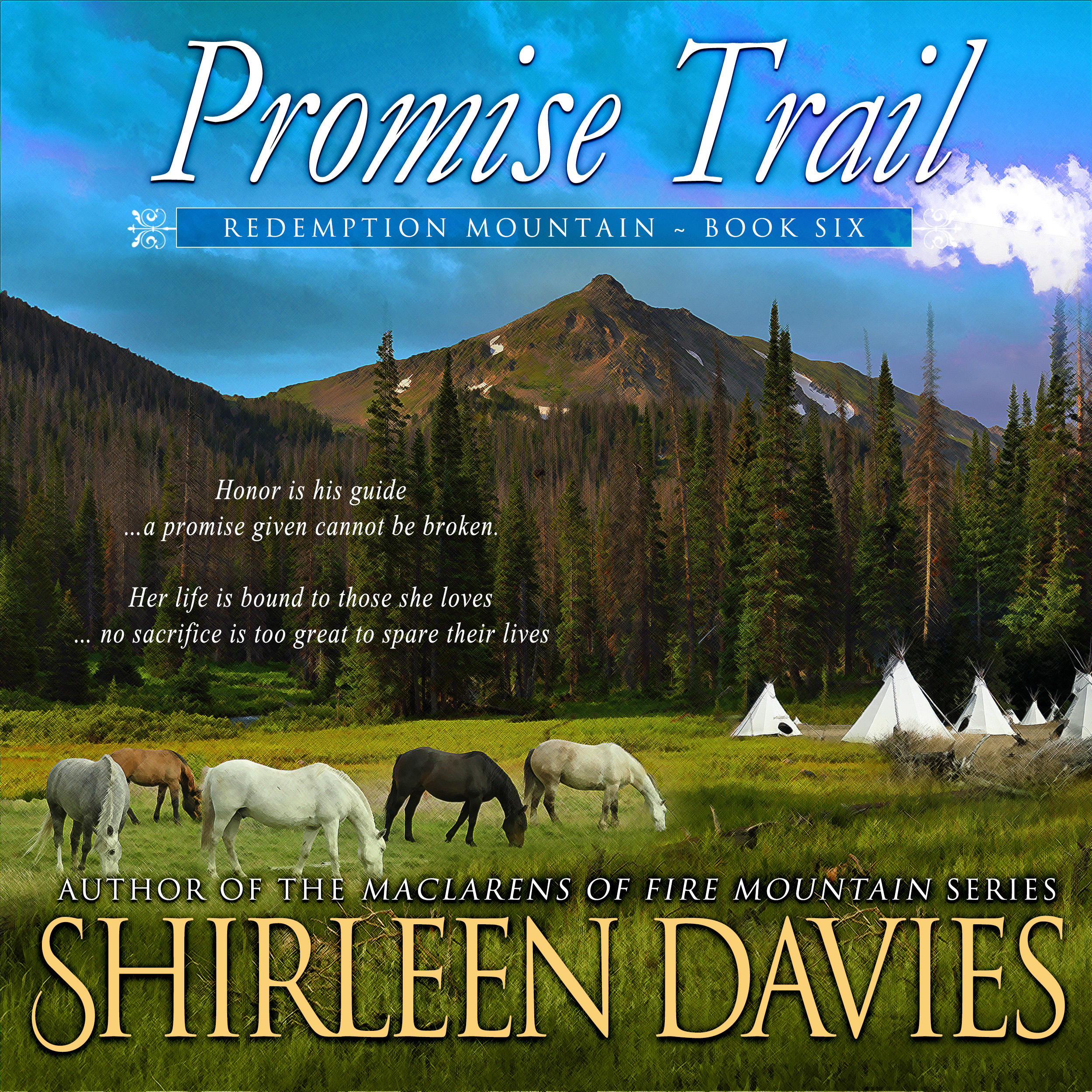 Promise Trail audiobook by Shirleen Davies