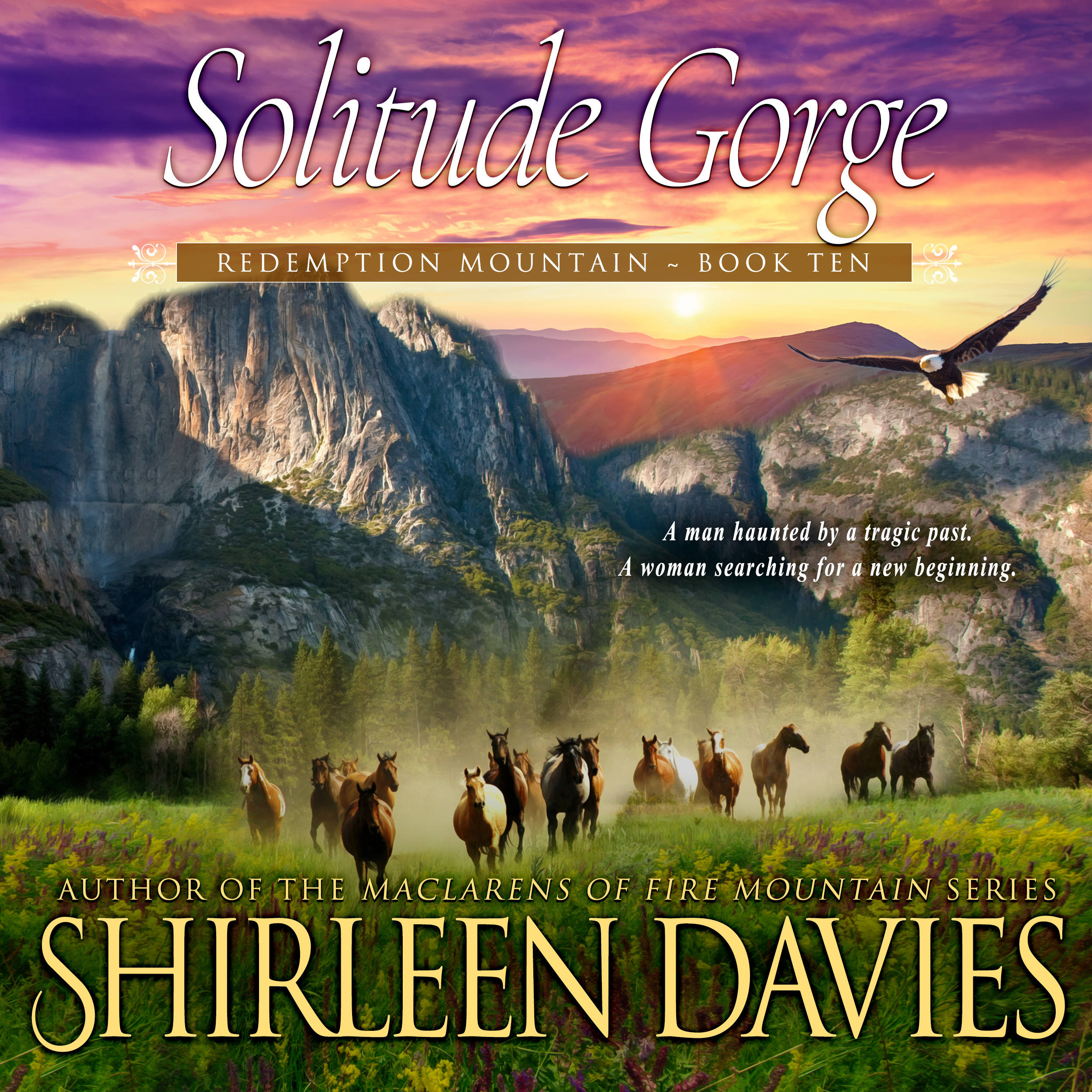 Solitude Gorge audiobook by Shirleen Davies