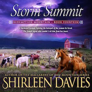 Storm Summit audiobook by Shirleen Davies